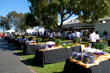 San Mateo Event Center Corporate Picnics