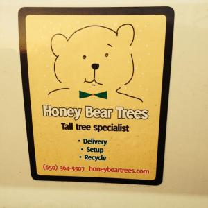 Honey Bear Trees
